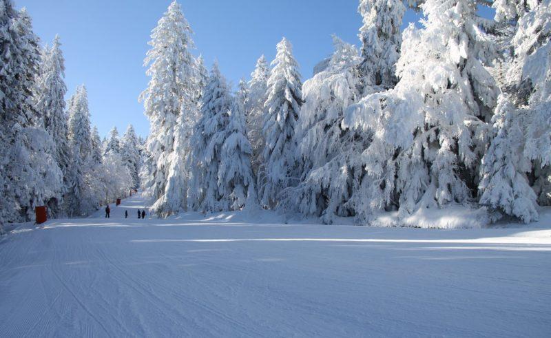 Pistes de ski de Gérardmer
