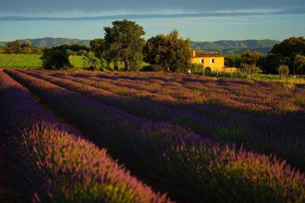 sejour touristique provence